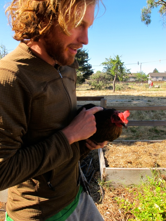 A man and his chicken