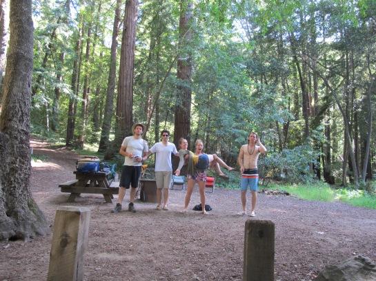 Redwood campsite