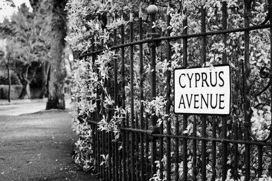 1-cyprus-avenue-belfast-as-made-famous-by-the-van-morrison-song-joe-fox-1
