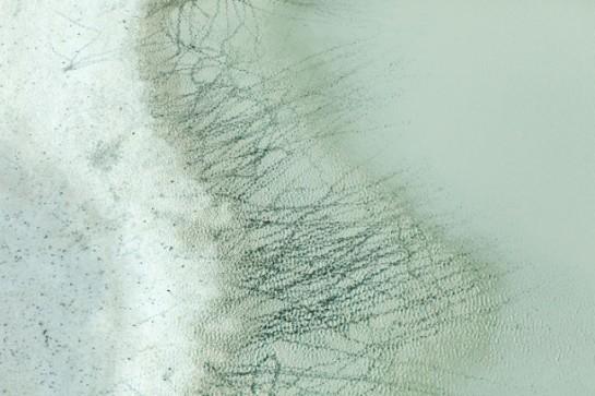 90-Zack-Seckler-Botswana-Robin-Rice-Gallery-yatzer-612x408